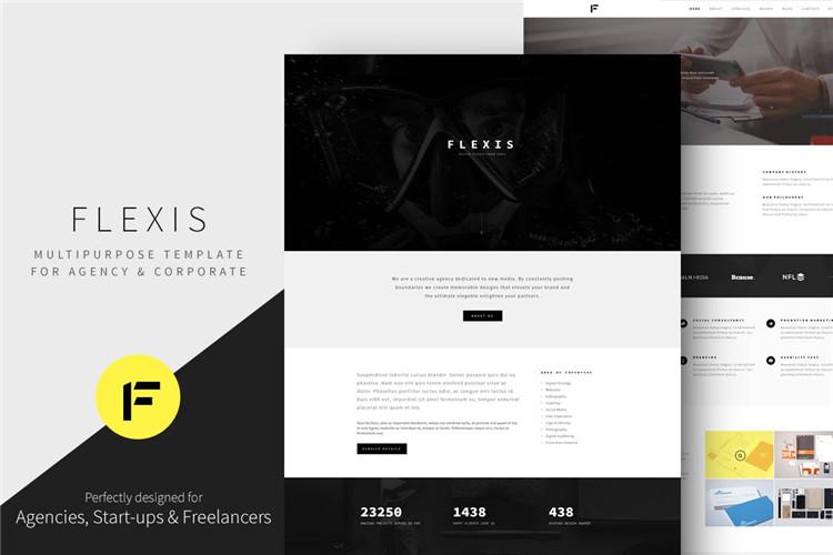 多用途公司企业网站模板Bootstrap模板Flexis