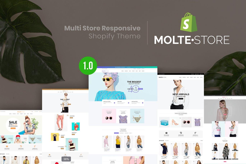 多商店风格响应式Shopify主题MolteStore
