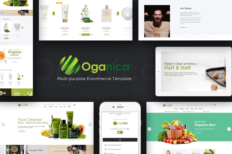 美容天然化妆品绿色商城Magento2主题Organica模板下载